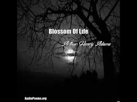 Blossom Of Life (Arthur Henry Adams Poem)