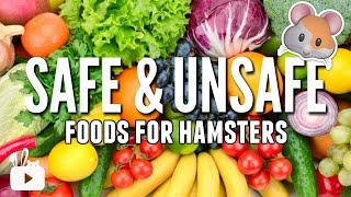 SAFE and UNSAFE foods for hamsters!