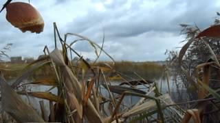 """Озеро Смолино (труба) - """"по-шутковал"""" малехо..."""