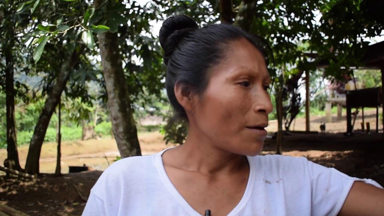 77cd70543 Ecuador - Tierra de Resistentes