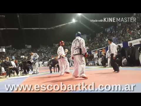 Xlll Panamericano de taekwondo itf argentina 2016