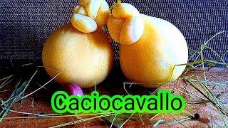 Качоковалло сыр переброшенный через седло лошади рецепт сыра качоковалло