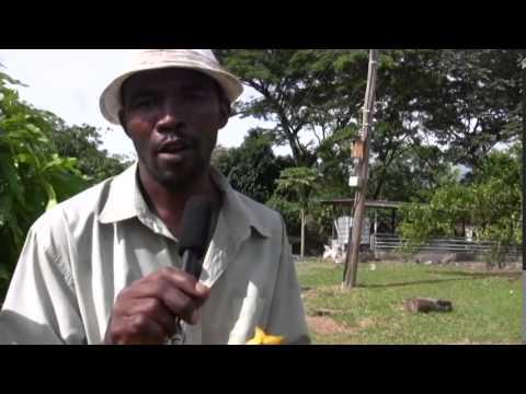 Why I came to Richmond - Edwin San-J Johnson