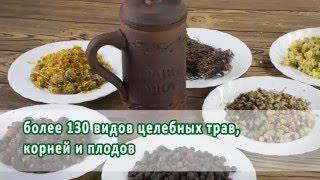 Лекарственные Травы Кавказа - Горячий Ключ 2016