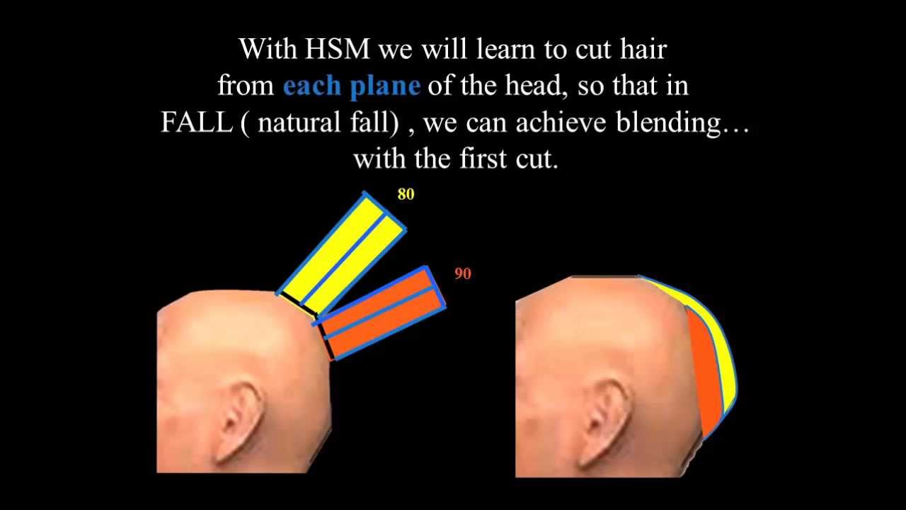 How Head Shape Affects Our Hair Cuts Youtube