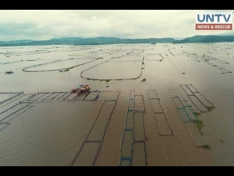 UNTV Drone Captures Removal Of Fish Pens From Laguna Lake