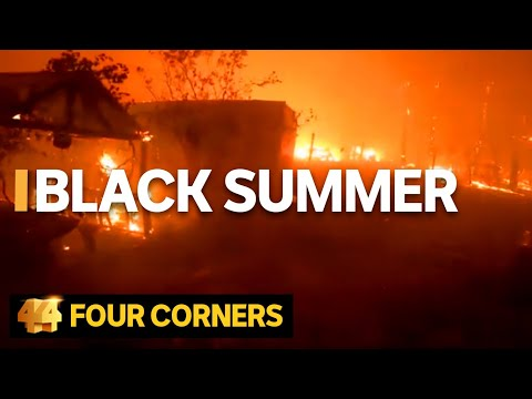 The stories behind the viral videos from Australia's bushfire crisis | Four Corners