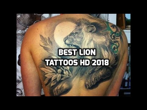 Lion Tattoos HD - 84 Lion Tattoo Designs 2018