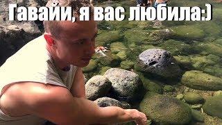 Джуманджи Гавайев - Маноа
