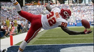 NFL Circus Catches (HD)