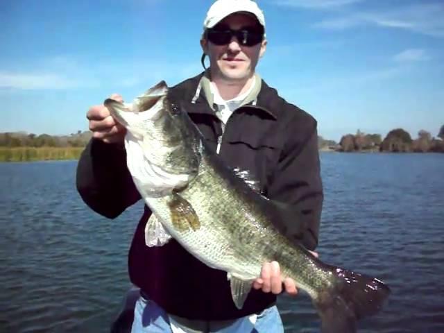 Orando Florida Bass Fishing: 7lber getting released....