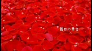 柴田淳 『幸福な人生』 (カラオケ)