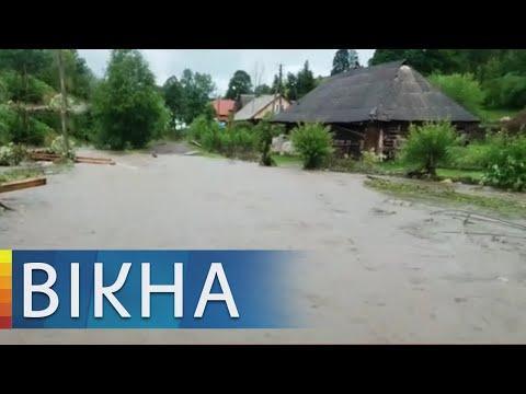 Валили деревья и срывали крыши: как мощные ливни накрыли запад и юг Украины | Вікна-Новини