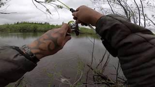 Рыбалка Смена погоды и вот результат