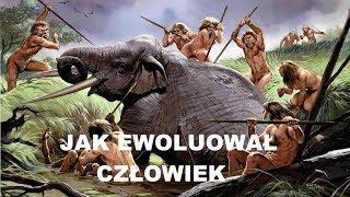 Jak ewoluował człowiek 2019 HD Odc.1 Film Dokumentalny Lektor PL