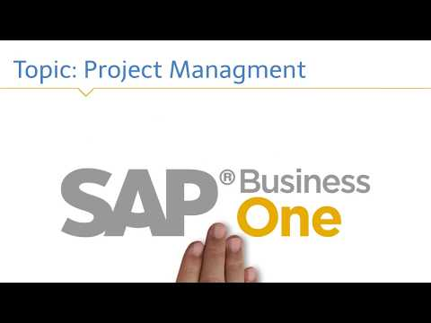 SAP Business One Project Management