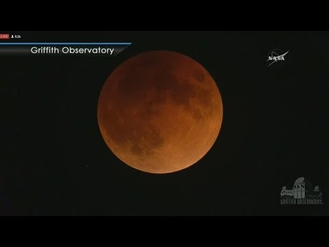 Live! Fenomena Langka Super Blue Blood Moon (No Audio)
