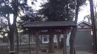 杉並区清水 中瀬天祖神社