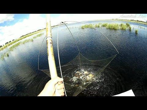 Рыбалка на подъёмник ПАУК, за час распугали всю рыбу