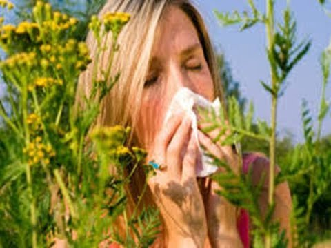 how to stop allergies immediately