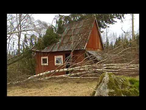 Stormen Gudrun 2005
