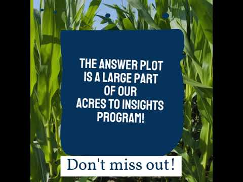 Last Chance for the Answer Plot!