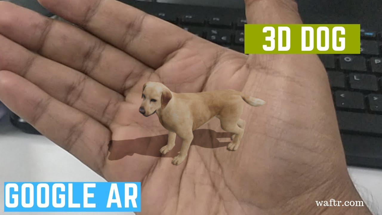 How To See 3d Dog In Mobile Google Search