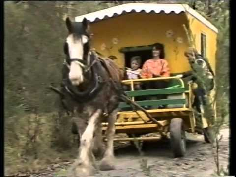 Southern Cross TV8 Ident (1986)