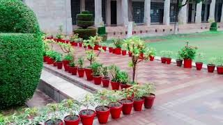 Agriculture University Peshawar | proud to be agricultureian | for more subscribe our channel