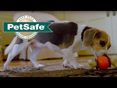 3-dog-toys-in-1-–-treat-holding-bouncy-bone™