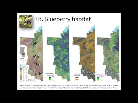 Scott Nielsen - Biodiversity & Ecosystem Characterization Using Lidar & Wet Areas Mapping