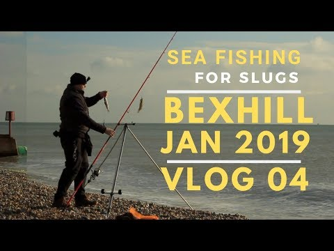 Sea Fishing Bexhill January 2019