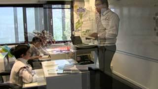 Preparation For Top Ranked Universities Only Albert Einstein International School Www Aeis Nl