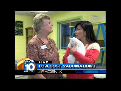 Low-cost Pet Vaccinations
