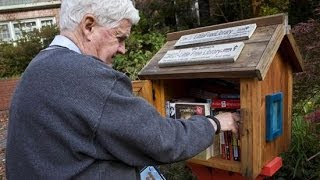 Little Free Libraries Spring Up Across The U.s.