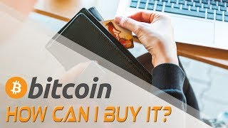 Where Can I Buy Bitcoin? Cryptocurrencies and Digital Currency   Crypto Cousins
