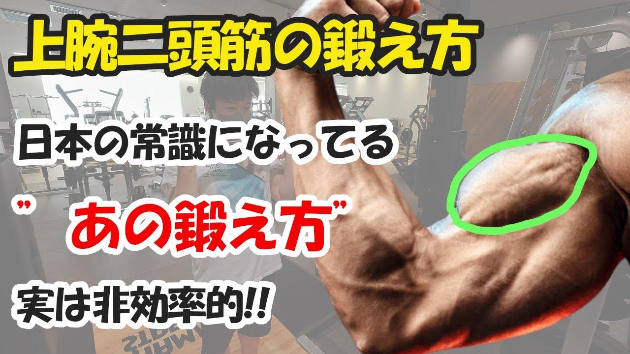 【科学的】腕を太くする上腕二頭筋の鍛え方