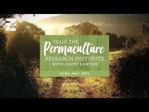 Geoff Lawton's Zaytuna Farm Video Tour Part I, 2012