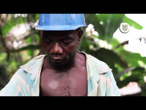 Sustainable Gold Mine- Gold Field, Tarkwa Mine Story