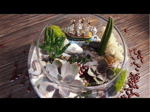 Флорариум из суккулентов с песочком