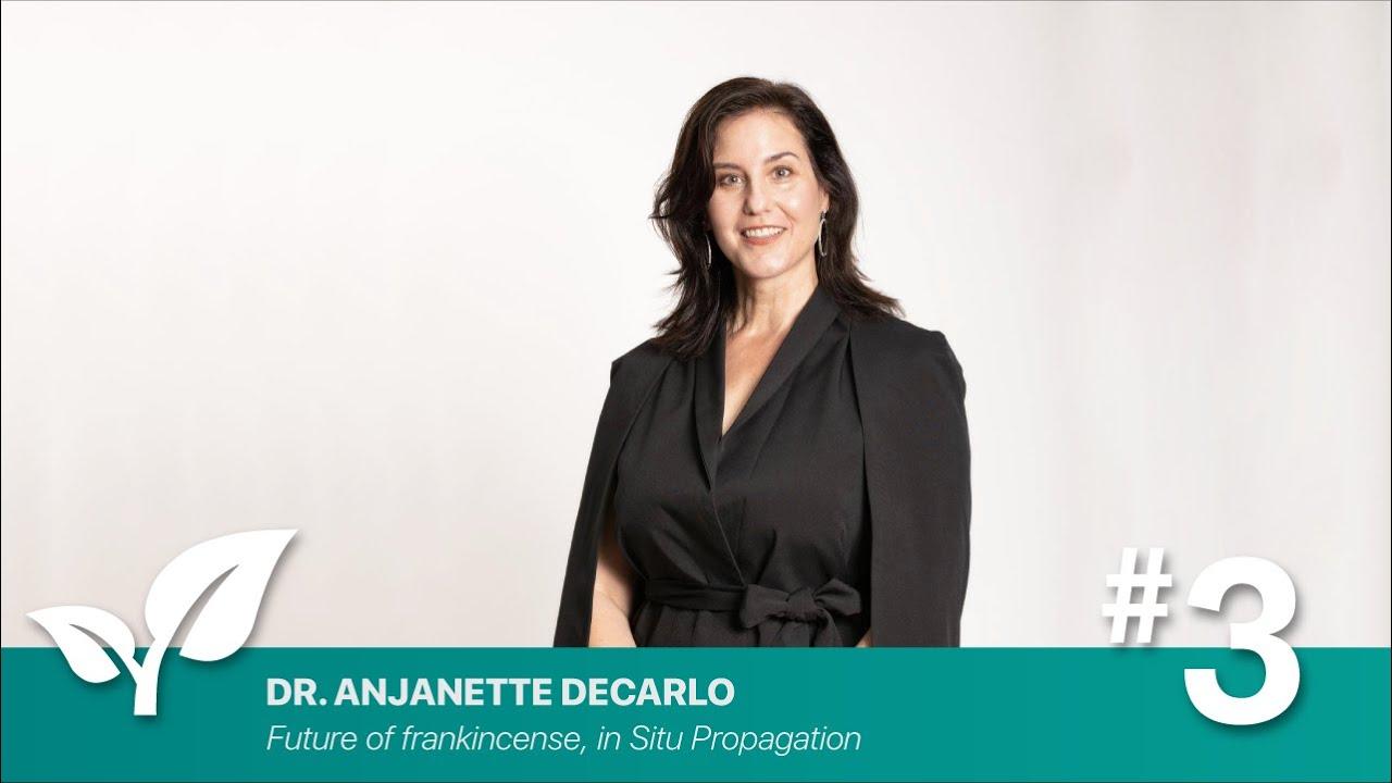 Webinar: Future of frankincense, in Situ Propagation By Anjanette DeCarlo PhD- Research Aromatica