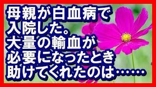 秋の花 コスモスの花言葉は 「乙女の真心」「調和」「謙虚」 です。 母...
