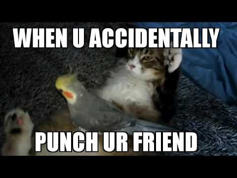 hqdefault when u accidentally punch a friend\