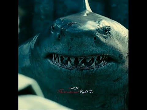 Download King Shark 😈 || Suicide Squad || Killer Attitude