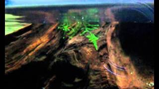 amazon biotope paludarium