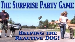 "The Surprise Party Game: Reactivity Dog Training ""barking At People, Dogs, Or Things"""