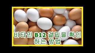 비타민 B12 결핍을 …