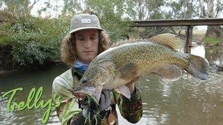 Murray Cod Fishing in SKINNY water!!