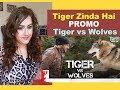 Tiger Zinda Hai Promo - Tiger vs Wolves | Salman Khan | Katrina Kaif | Ali Abbas Zafar | REACTION |