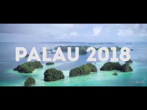 Palau 2018 (Drone & Diving)